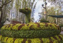 Ref_Topiary