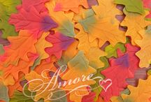 Fall Weddings / Inspiration and Ideas for Fall Weddings