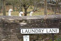 Laundry Lane