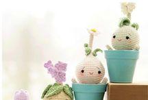 Ami plants