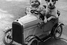 Vintage pet photos