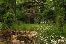 naturalne ogrody