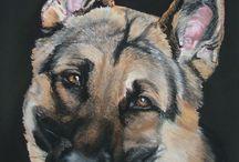 Dogs in Art / levensechte portretten  gemaakt met pastelkrijt