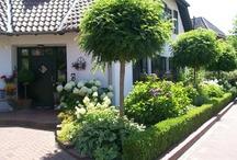 ogród wzdłuż domu
