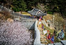 Korea + Japan Trip / Travel / by Leeann Yang