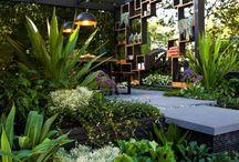 Architektur,grün
