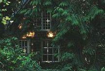 secret cabin