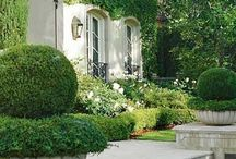 cool landscaping ideas