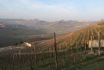 Piemonte / Regio