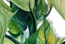 Botanicals watercolour