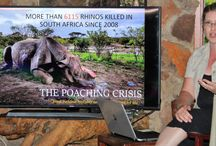Save The Waterberg Rhino