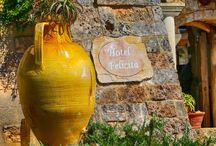 HOTEL FELICITA' / Curtipitrizzi (cortili di pietra) è il nome della masseria del 1600 che Al Bano ha costruito dal 1970 in poi, un villaggio-hotel esclusivo composto da 50 stanze, una diversa dall'altra con annesso, ristorante, pizzeria, winery, spa, piscina. Le camere standard sono tutte all'interno della tenuta, alcune con terrazzino o cortiletto privato, tutte dotate di Tv al plasma, cassaforte, telefono e aria condizionata.