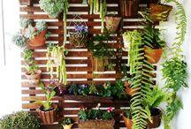 Exterior/garden design