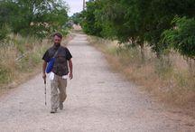 cammino di santiago 2011