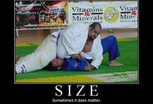 Martial Arts Humour
