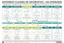microbes and antibiotics