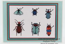 Beatles and Bugs