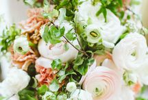 Frilled floral / by Shelby Joy Ulrich