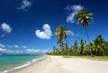 Nevis & St Kitts