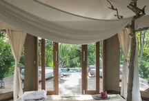 Vanuatu Dreaming