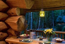 Log cabin - interior