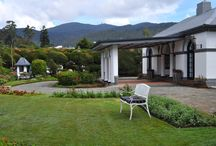 Royal Cocoon, Nuwara Eliya / Bungalow Style Hotel with 7 Luxury bedrooms with ensuite bathrooms. It extends over an acre of land with beautifully landscaped gardens and a picturesque view of hills.