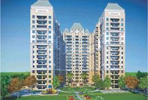 Flats in Coral City Rajasthan 9266629901 Coral City / Coral City - Book your dream home in new residential project. Coral City township that is offering variety of feature with the combination of 1bhk and 2bhk apartments/Flats.