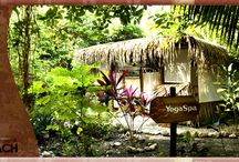 "Spa Natural in Santa Teresa Beach  / Enjoy the Bliss of Hotel Tropico Latino's ""Yoga & Spa Natural""  / by Hotel Tropico Latino"