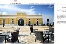 Design Project / Design, web design, landing page