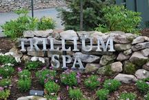 Spa / Spa / by Pennsylvania Ski Areas Association
