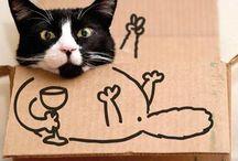 Fun//Wine