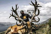 My passion / Hunting is art!!!