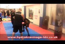 Martial Arts Techniques