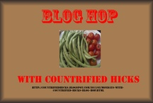 Blogs / by Countrified Hicks