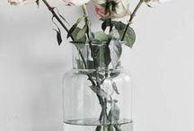 HOLI (FLEURS) / Flowers