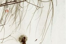 Don Hong Oai