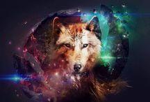 lobos / Fotos, imagenes y dibujos de lobos