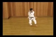 Shotokan Karate -  Kata's / Shotokan Kata's. Preferable JKS style.
