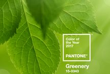 GREENERY Color 2017 / The color of the Year 2017 is Greenery: een warme lichte heldere kleur, een echte lentekleur.
