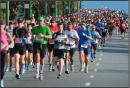 Running: Races 2013