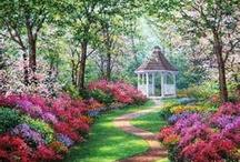 seasons spring /summer  / by Diane Boren