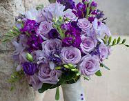 сиренево-фиолетовая гамма