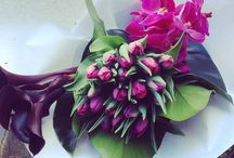 Modern Bouquets and Arrangements / Floral bouquets and arrangements of the more contemporary kind