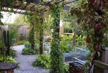 Trädgårds planer