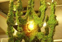 Garden Creativity