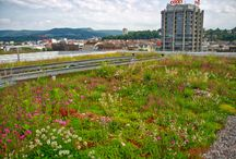 Liberec studie inspirace