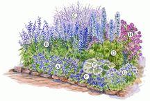 GARDEN / Záhradné plány, výsadba apd. ......