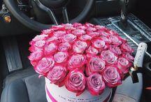The million roses