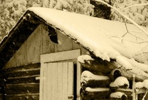 Winter To Do's in Parry Sound