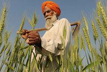 Mit #India / Serie di #reportage sull'#India